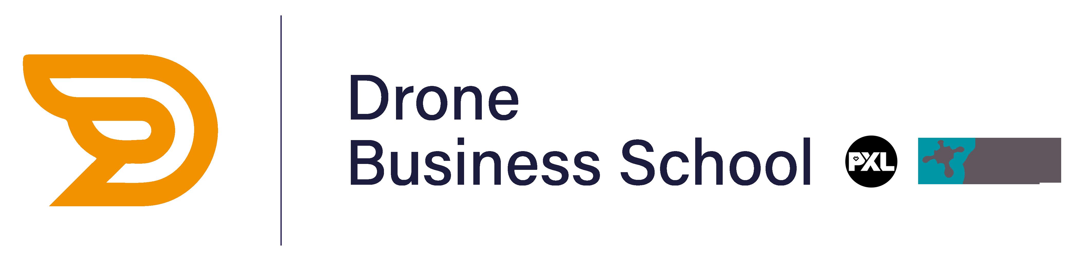 Drone Business School